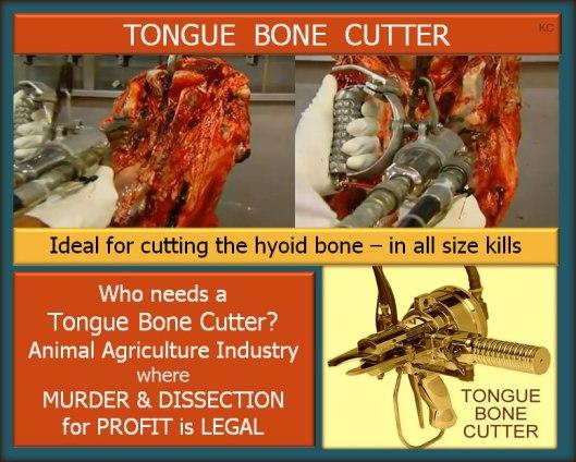 tongue cutter